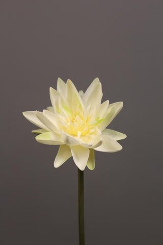 Artificial Flower Water Lily real touch floramatique SB005 (White) -REA1-4 - Viva La Rosa