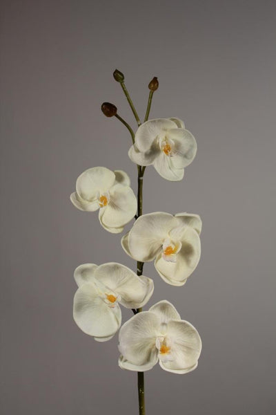 "Artificial Flower SB019 38"" Phalenopsis Orchid orchid real touch floramatique(White)-PHA1 - Viva La Rosa"