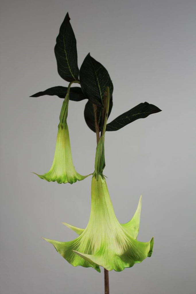 "Artificial Flower Angel's Trumpet real touch floramatique SB136 49""(Green)-ART1-27 - Viva La Rosa"
