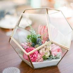 "GEOMETRIC 10.5"" X 13.5"" PLANTER GLASS BALL TERRARIUM VASE money box hexagon - Viva La Rosa"