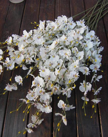Artificial Flower white Oncidium Dancing Lady orchid silk flower (ONC1) - Viva La Rosa