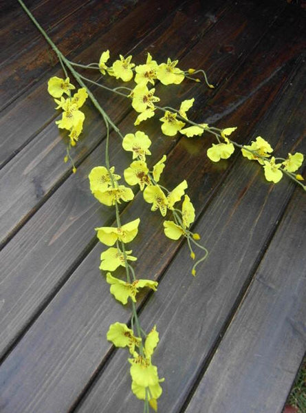 Artificial Flower yellow Oncidium Dancing Lady orchid silk flower (ONC1-1) - Viva La Rosa