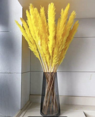 "25"" Yellow pampas grass stick (M)"