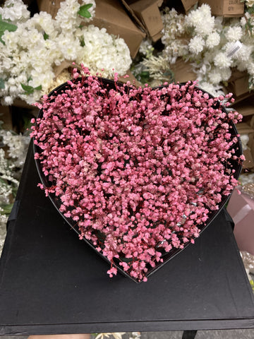 Preserved baby's breath bunch Pink