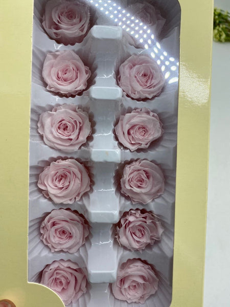 Preserved Rose Head Light Pink (box of 12)