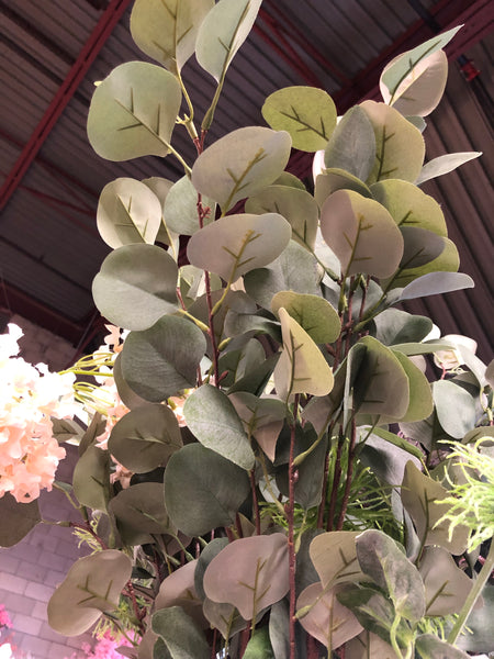 Long stem Eucalyptus Bunch for Wedding home decor Silver Dollar