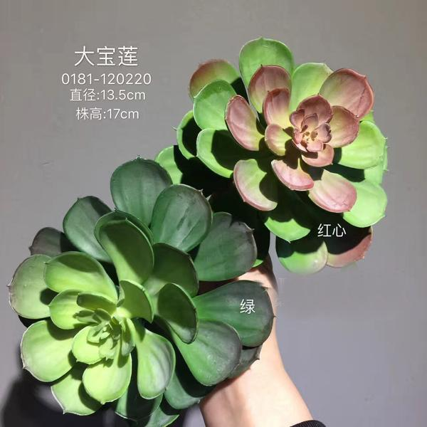 Real Touch Succulent artificial flower leaf wedding greenery 0181-120220  (Aeonium)-REA-10