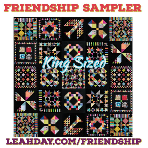 Friendship Sampler King Sized Quilt