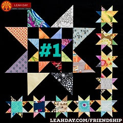 Friendship Sampler Block of the Month Quilt