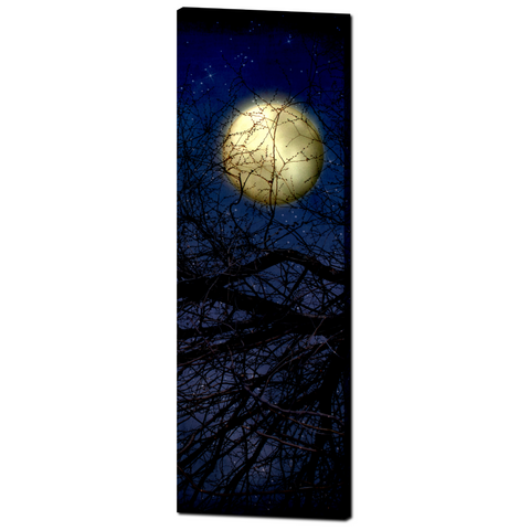 Gothic Canvas - Blue Moon Canvas - Large Canvas - Full Moon Canvas - Tall Panoramic - 20 x 60 Canvas - Gallery Wrapped Canvas - Moon Photo - Sylvia Coomes