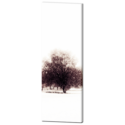 Alone in the Cold Fine Art Photography 20 x 60 x 1.25 inch Premium Canvas Gallery Wrap - Sylvia Coomes