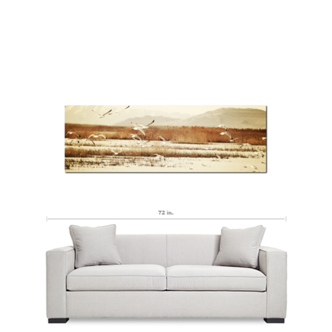 Bird Art - Tan Brown Canvas - Seagull Canvas - 20 x 60 Canvas - Panoramic Canvas - Nautical Canvas - Gallery Wrapped Canvas - Photo Canvas - Sylvia Coomes
