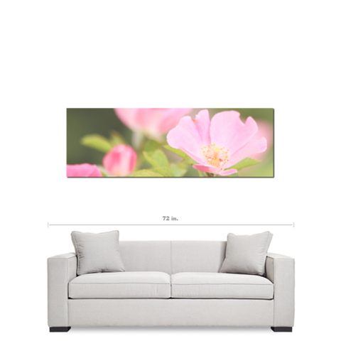 Flowers 6 Fine Art Photography Panoramic 20 x 60 x 1.25 inch Premium Canvas Gallery Wrap - Sylvia Coomes