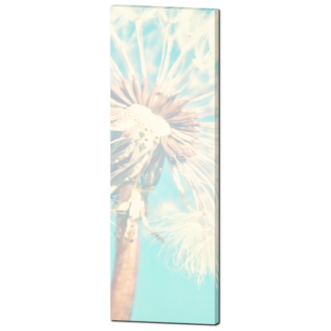 Baby Canvas Art - Baby Decor - Nursery Wall Art - Aqua Blue and White - Dandelion Canvas - Nursery Canvas - Flower Photo - 20 x 60 Canvas