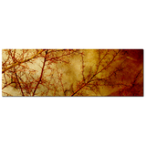 Gothic Red Trees Fine Art Photography Panoramic 20 x 60 x 1.25 inch Premium Canvas Gallery Wrap - Sylvia Coomes