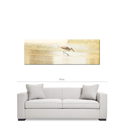 Beach Canvas - Bird Decor - Panoramic Canvas - Tan Photo Art - Large Canvas - Nautical Canvas - 20 x 60 Canvas - Beach house - Wall Art - Sylvia Coomes