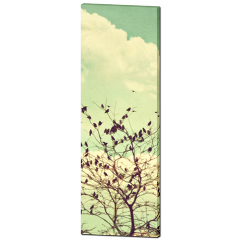 Bird Canvas - Home Decor - Tall Canvas - Vintage Style Art - Tall Canvas - Large Canvas - Mint Green - 20 x 60 Canvas - Pastel Wall Art - Sylvia Coomes