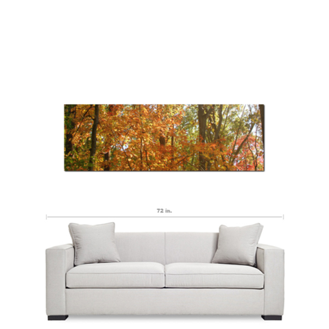 Panoramic Wall Art large canvas - nature canvas - panoramic wall art - panoramic