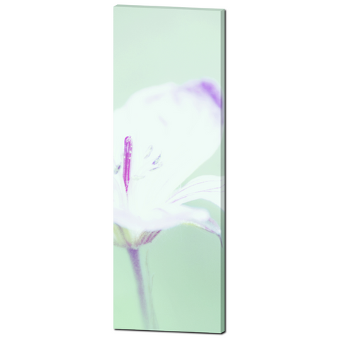 Cottage Chic Canvas - Abstract Flower - Mint and Purple - Photo Canvas - Modern Canvas - Large Wall Art - Large canvas - 20 x 60 Canvas - Sylvia Coomes
