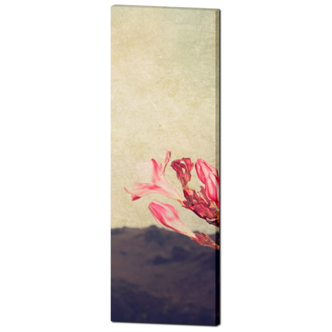 Cottage Chic Canvas - Large Flower Canvas - Tall Canvas - Pink Tan Brown - Mediterranean Canvas - Large Canvas - Wall Art - 20 x 60 Canvas - Sylvia Coomes