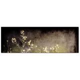 Gothic Canvas - Gothic Home Decor - Panoramic Canvas - Abstract Weeds - Abstract Canvas - Large Canvas - Black and Tan - 20 x 60 Canvas
