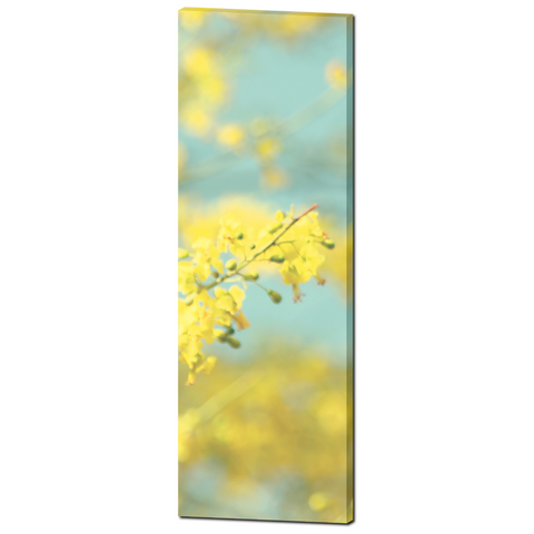 Abstract Yellow Art - Sky Blue Canvas - Cottage Chic Flowers - Large Flower Canvas - Blue Yellow Canvas - Large Canvas - 20 x 60 Canvas