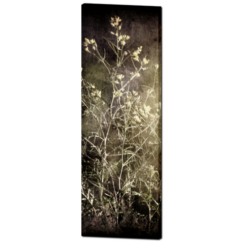 Gothic Photo Canvas - Gothic Home Decor - Tall Canvas - Abstract Weeds - Abstract Canvas - Large Canvas - Black and Tan - 20 x 60 Canvas - Sylvia Coomes