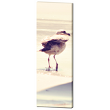 Seagull Canvas - Beach Home Decor - Tall Canvas - Beach Art - Bird Canvas - Large Canvas - Tan Art - 20 x 60 Canvas - Nautical Wall Art - Sylvia Coomes