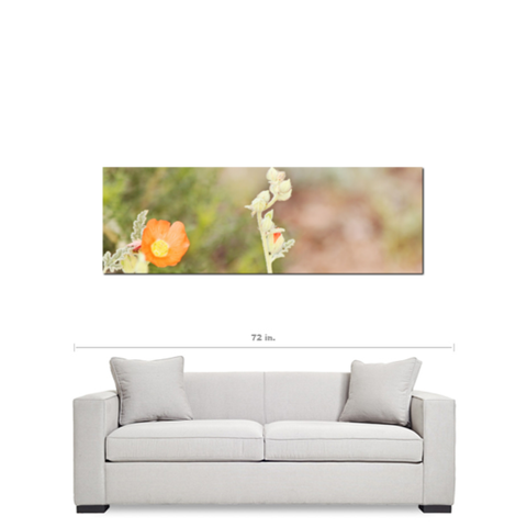 Orange Tan Green Art - Large Canvas - Desert Flowers Art - Minimalist Canvas - Wild Flowers Canvas - Southwest Photo - 20 x 60 Canvas - Sylvia Coomes