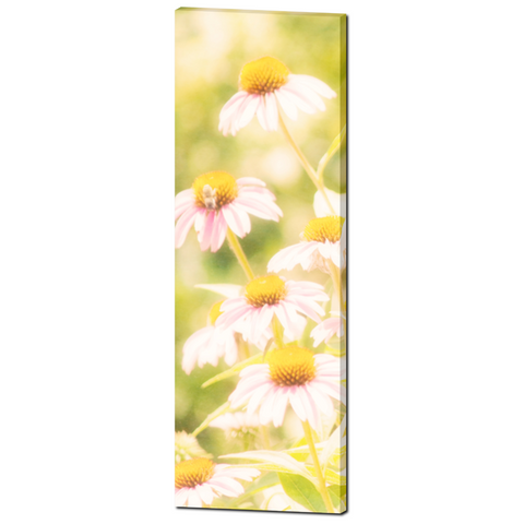 Fields of Flowers Fine Art Photography 20 x 60 x 1.25 inch Premium Canvas Gallery Wrap - Sylvia Coomes
