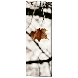 Frozen Fine Art Photography 20 x 60 x 1.25 inch Premium Canvas Gallery Wrap - Sylvia Coomes