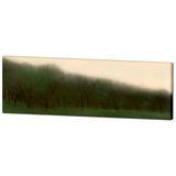 Tree Photo - Abstract Art - Forest Canvas - Artistic Blur - Home Decor - Panoramic - Hunter Green - Fine Art - Large Canvas - 20 x 60 Canvas - Sylvia Coomes