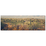 Desert Landscape 1 Fine Art Photography Panoramic 20 x 60 x 1.25 inch Premium Canvas Gallery Wrap - Sylvia Coomes