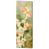 Orange and Green Canvas - Large Canvas - Desert Flowers Art - Tall Canvas - Wild Flowers Canvas - Southwest Photo - 20 x 60 Canvas - Sylvia Coomes