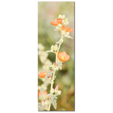 Orange and Green Canvas - Large Canvas - Desert Flowers Art - Tall Canvas - Wild Flowers Canvas - Southwest Photo - 20 x 60 Canvas