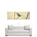 Tan Brown Canvas - Bird Canvas - Large Sepia Canvas - 20 x 60 Canvas - Nature Canvas - Bird Photo - Gallery Wrapped - Panoramic Canvas - Sylvia Coomes