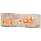 Orange Flowers - Large Canvas - Desert Wall Art - Panoramic Canvas - Orange Tan Green - Wild Flowers Photo - 20 x 60 Canvas - Sylvia Coomes