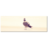 Minimalist Canvas - Seagull at the Beach - Home Decor - Panoramic Canvas - Seagull Canvas - Natural Tones - Large Canvas - 20 x 60 Canvas - Sylvia Coomes