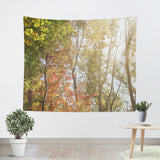 Autumn Light 1 Tapestry - Sylvia Coomes