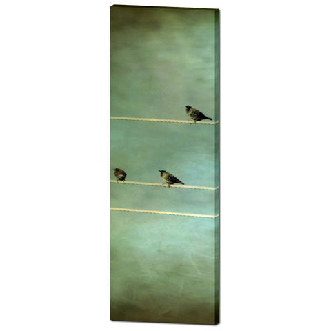 Gothic Birds on a Wire Fine Art Photography 20 x 60 x 1.25 inch Premium Canvas Gallery Wrap - Sylvia Coomes