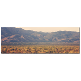 Desert Landscape 7 Fine Art Photography Panoramic 20 x 60 x 1.25 inch Premium Canvas Gallery Wrap