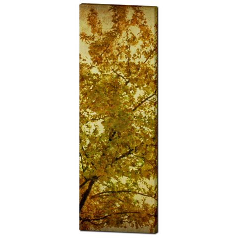 Changing Fine Art Photography 20 x 60 x 1.25 inch Premium Canvas Gallery Wrap - Sylvia Coomes