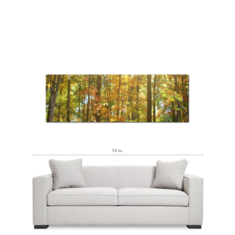 Large Canvas - Nature Canvas - Panoramic Wall Art - Panoramic Canvas - Yellow Green - Autumn - Tree Canvas - 20 x 60 Canvas - Woodland Art - Sylvia Coomes