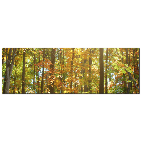 Large Canvas - Nature Canvas - Panoramic Wall Art - Panoramic Canvas ...
