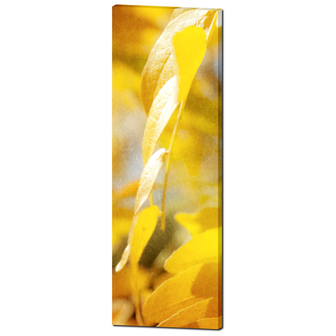 Autumn Leaves 5 Fine Art Photography 20 x 60 x 1.25 inch Premium Canvas Gallery Wrap - Sylvia Coomes