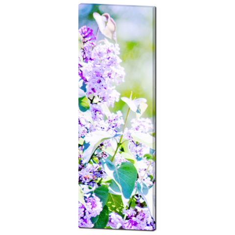 Hazy Purple Flowers Fine Art Photography 20 x 60 x 1.25 inch Premium Canvas Gallery Wrap