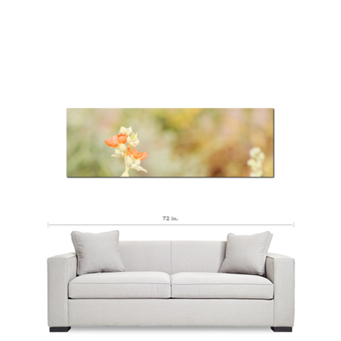 Orange Tan Green Canvas - Large Canvas - Desert Flowers Art - Minimalist Canvas - Wild Flowers Canvas - Southwest Photo - 20 x 60 Canvas - Sylvia Coomes