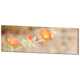Desert Flowers - Large Canvas - Floral Wall Art - Southwest Canvas - Orange Tan Green - Wild Flowers Photo - 20 x 60 Canvas - Sylvia Coomes