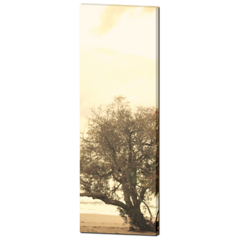 Beauty is all Around Fine Art Photography 20 x 60 x 1.25 inch Premium Canvas Gallery Wrap - Sylvia Coomes