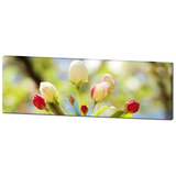 Bright Flowers 1 Fine Art Photography Panoramic 20 x 60 x 1.25 inch Premium Canvas Gallery Wrap - Sylvia Coomes